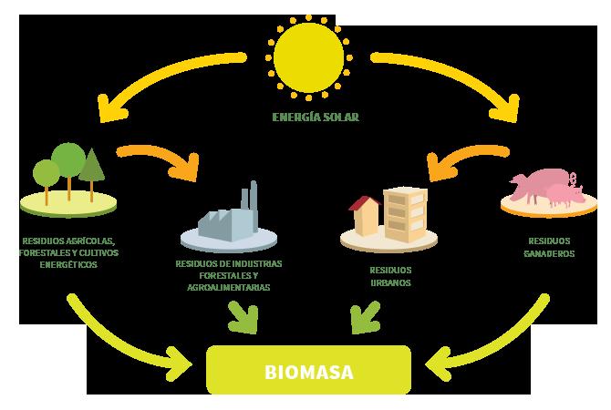 biomasa-terrassa