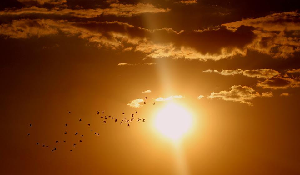 Energía solar térmica: Sistema de captación de radiación solar