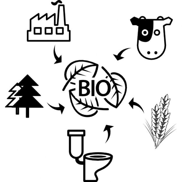 Biomasa en Barcelona