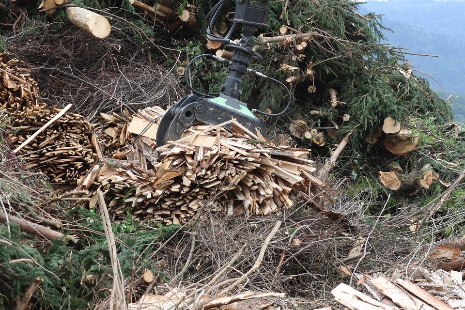 Ventajas de utilizar biomasa en tu vivienda de Sabadell