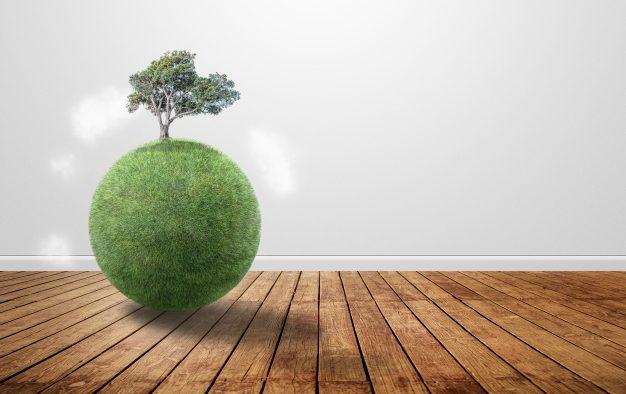 ¿Qué debemos tener en cuenta al escoger una caldera de biomasa?