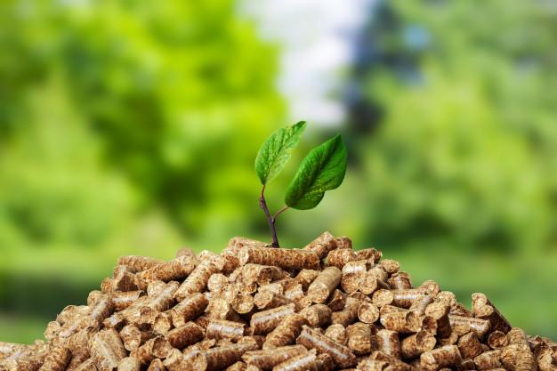 ¿Por qué instalar biomasa en casa?