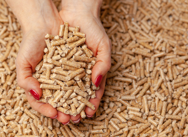 Biomasa, ¿La energía del pasado y del futuro?