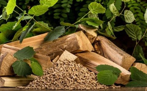 ¿Qué es la energía de biomasa?