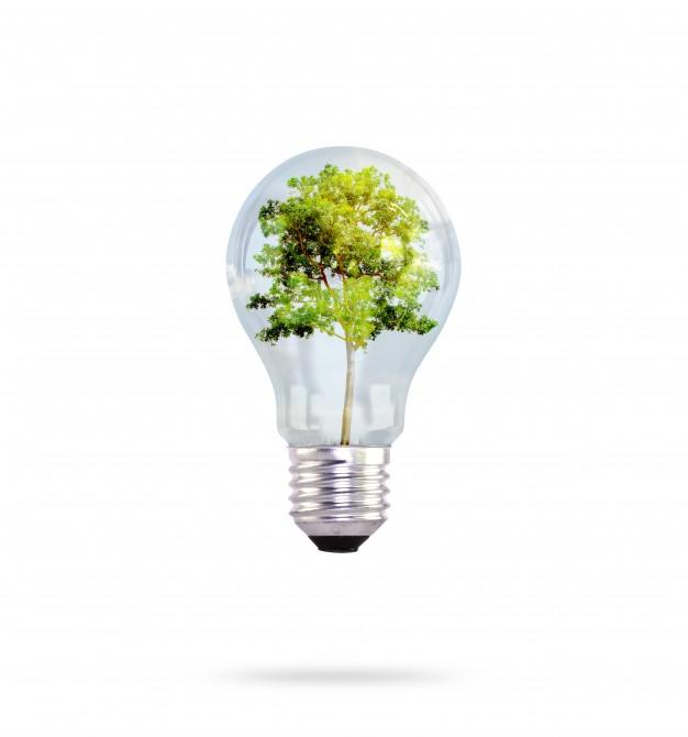 ¿Qué debes saber sobre la energía solar?
